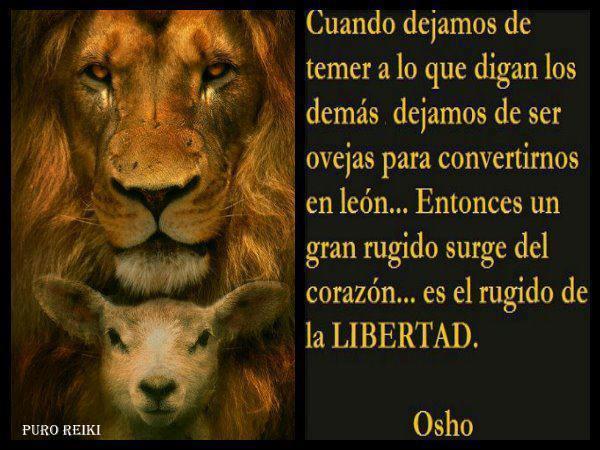 cuando-dejamos-de-temer-a-lo-que-nos-digan-los-demas-dejamos-de-ser-ovejas-para-convertirnos-en-leon